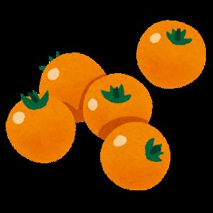ミニトマトのイラスト(オレンジ)