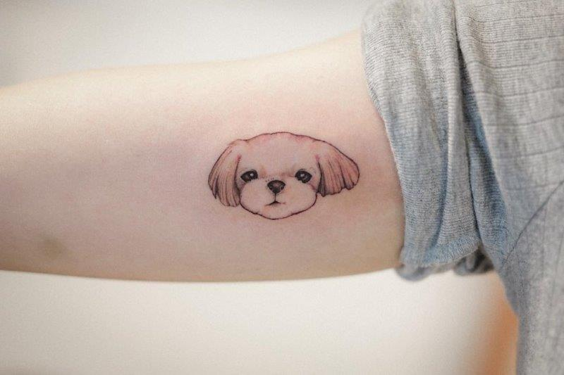 Maltese Dog Tattoo