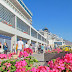 Porto do Funchal vai bater o recorde de passageiros em novembro