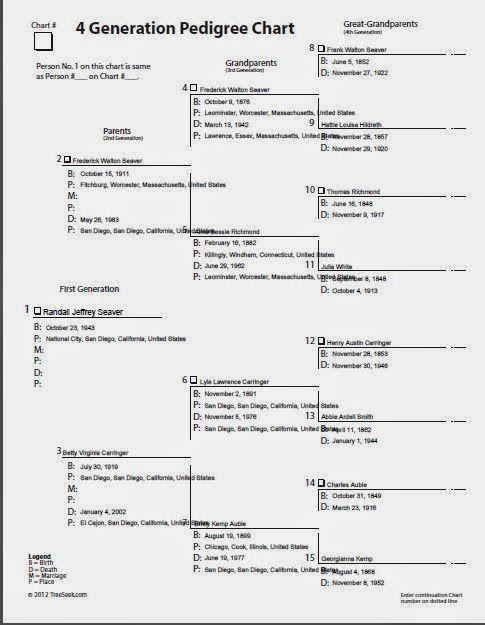 how to create a family pedigree chart on word