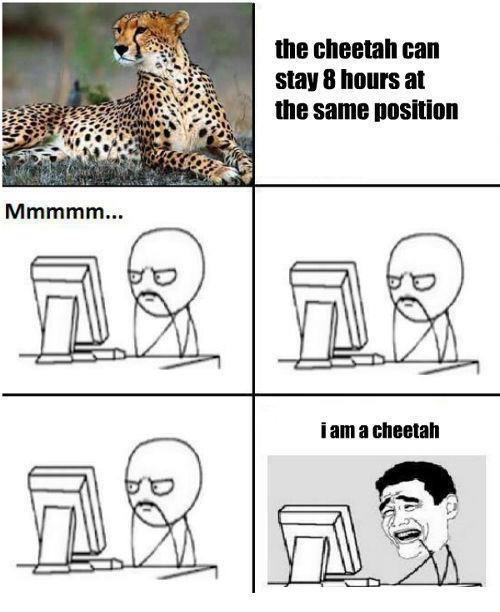I Am Cheetah then !