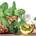 Saúde é vida: Benefícios do óleo de hortelã para o esôfago