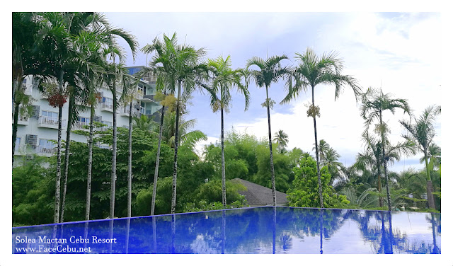 Solea Mactan Cebu Resort Infinity Pool