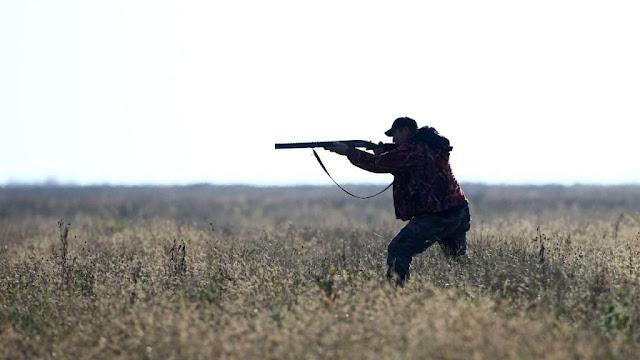 Quais são as principais regras de caça no Brasil?