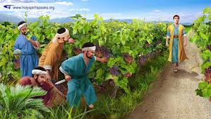 Parable of tenants in the vineyard