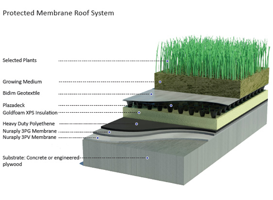 Altshift Nz Home Livng Roofs