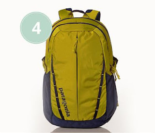 4. Patagonia Men's Refugio Pack 28L