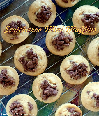 Scotcharoo Mini Muffins, pop-in-your- mouth muffins are an interpretation of a nostalgic treat marrying peanut butter, butterscotch, chocolate, and the crunch of crispy cereal. | Recipe developed by www.BakingInATornado.com | #recipe #dinner