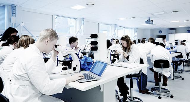 منحة دكتوراه في تقنيات الذكاء الاصطناعي والأنظمة البيئية الناشئة في الدنمارك ، 2020
