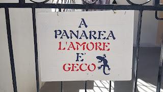 A Panarea l'amore è Geco