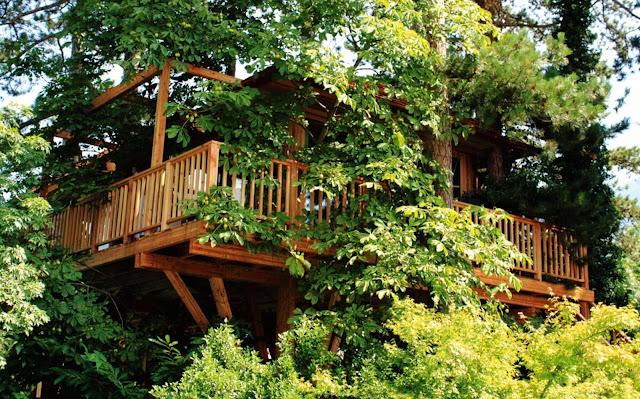 casa sull'albero: Hotel Irma, vicino Merano