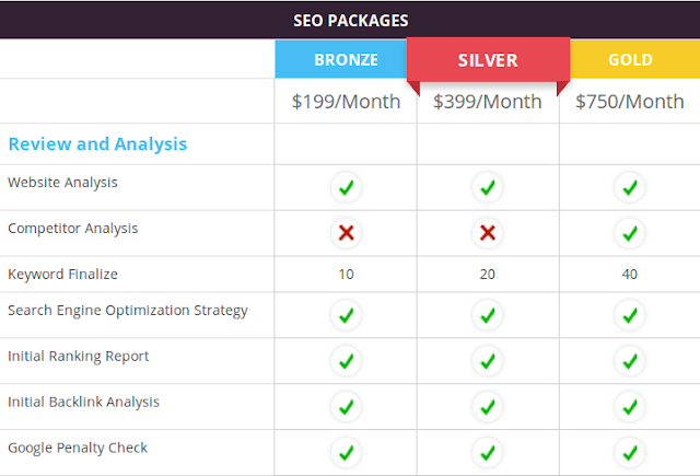 http://www.marketingadventure.co.in/packages/seo-packages/