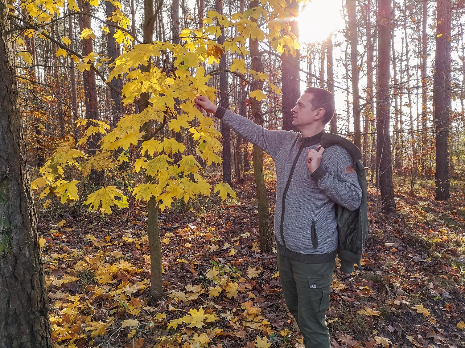 Gdzie pojechać z dzieckiem jesienią, czyli rodzinne wycieczki