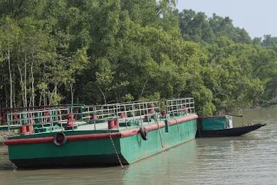 Harbaria of the Sundarbans