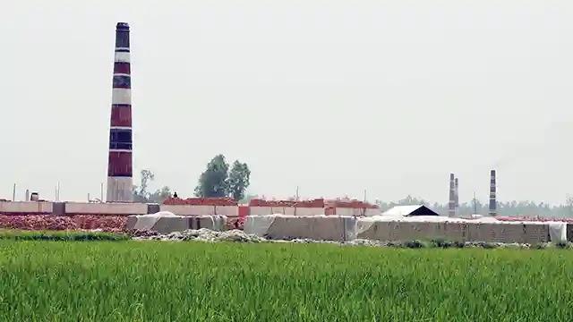 ধুনটে যত্রতত্র ইটভাটায় হুমকিতে জীববৈচিত্র