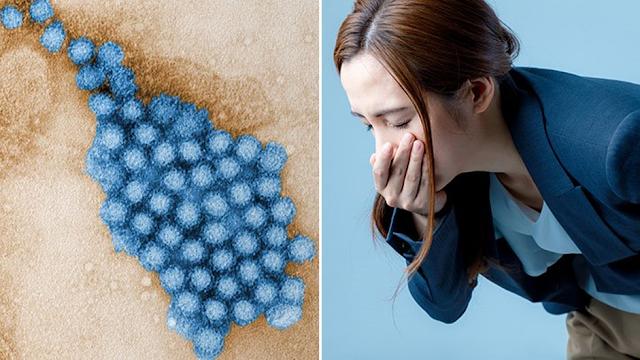 Penyebab Penyakit Flu Perut yang Perlu Dihindari