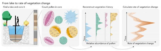 Global pollen samples reveal vegetation rate of change