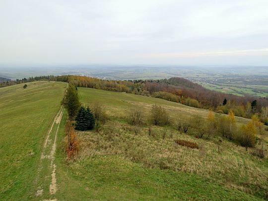 Grzbiet Grzywackiej Góry opadający do Nowego Żmigrodu.