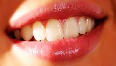 4 Cara Mengatasi Bibir Hitam Secara Tradisional