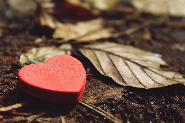 A wooden red heart and a dried leaf on the ground