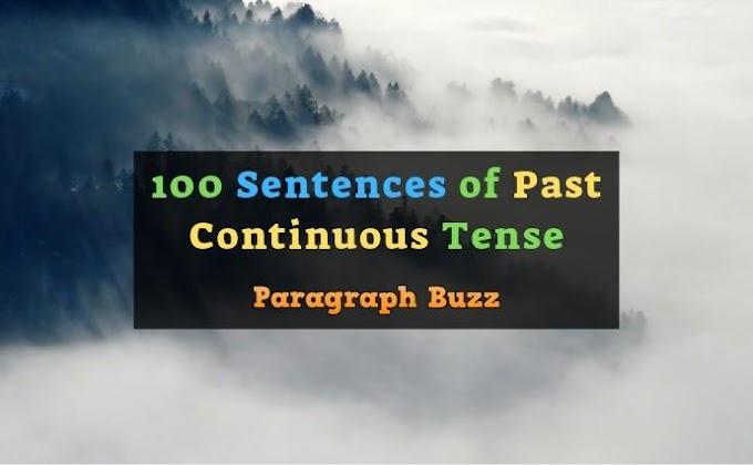 100 Sentences of Past Continuous Tense