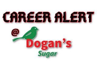 Apply for Dogan's Sugar Jobs 2020