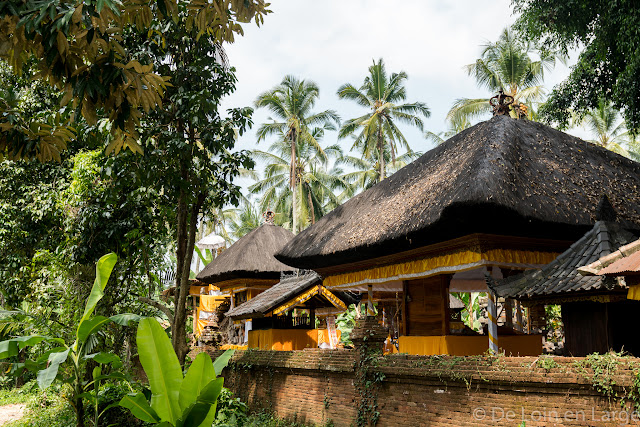 Temple vallée de la Sungaï Ayung - Ubud - Bali