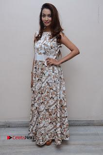 Telugu Actress Reshmi Thakur in Long Dress at Plus One ( 1) Audio Launch  0068.jpg