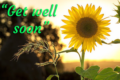 Get Well Soon Images