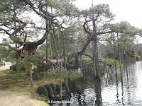 Tree supports in the water - Kenroku-en Garden, Kanazawa, Japan