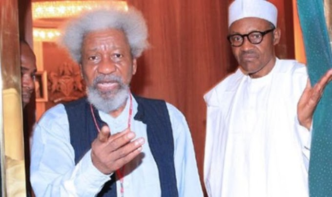 The President Is Not In Charge Of This Nation – Wole Soyinka