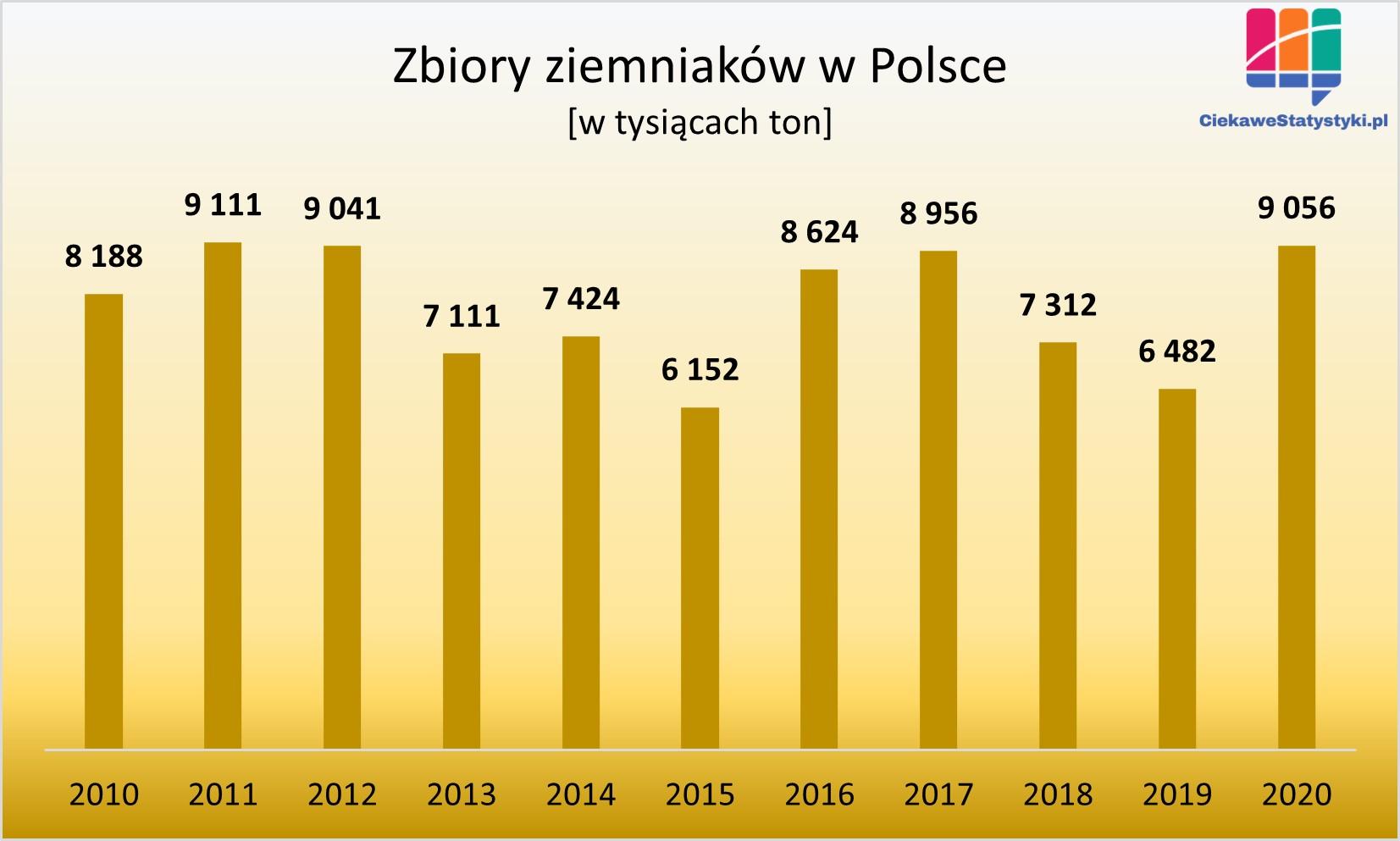 Zbiory ziemniaków w Polsce w 2020 roku; ile ziemniaków uprawia się w Polsce? Uprawa ziemniaków statystyki