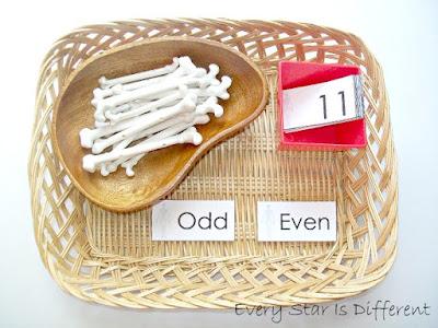 Odd and Even Bone Activity