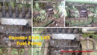 Yanmar Engine, Spare Parts, Fuel Pump, block, head, piston, connecting rod, bearing