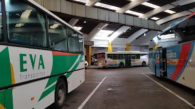 autobus estoi