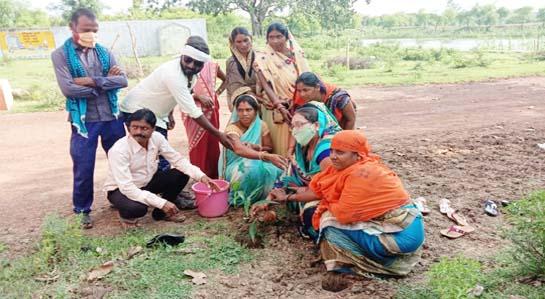 सुकमा जिले के सरपंच बेटी ने पेंड़ो की सुरक्षा के लिए कसी कमर