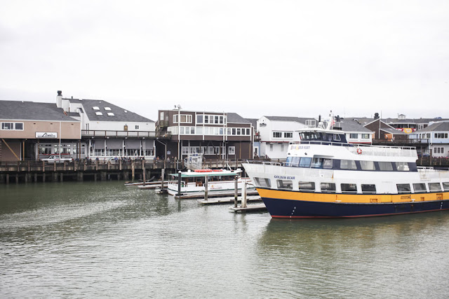 A view of Pier 39 and the Blue and Gold Fleet