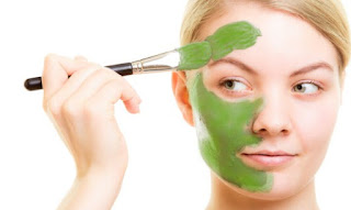 cara pembuatan masker daun kelor, cara menggunakan daun kelor untuk wajah, lulur daun kelor, cara membuat masker daun kelor untuk wajah, apakah daun kelor bisa menghilangkan jerawat, daun kelor untuk flek hitam, masker daun kelor untuk jerawat