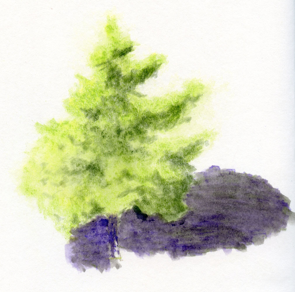 Fueled by Clouds & Coffee: Tree Studies in Color (Or a Lesson in ...