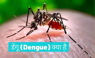 डेंगू क्या है