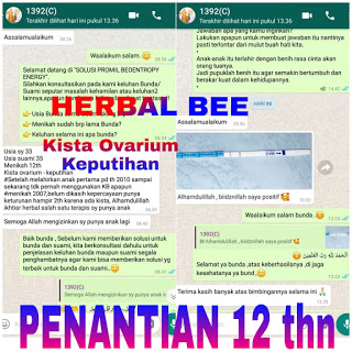 Distributor Herbal Bee di Malang