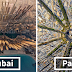 Beautiful Panoramic Pictures Of 20 Famous Cities