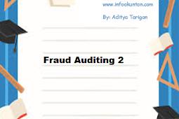 Fraud Auditing 2
