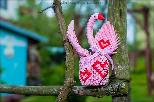 """425. Cukierkowy łabędź / 3d origami """"candy"""" swan"""