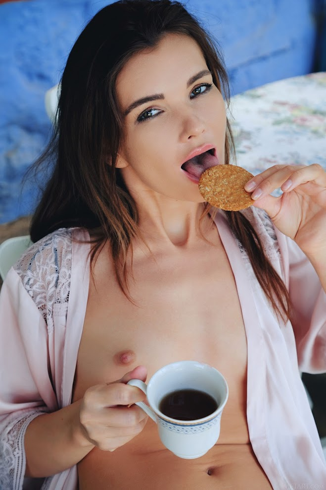 title2:MetArt Brit Coffee Break