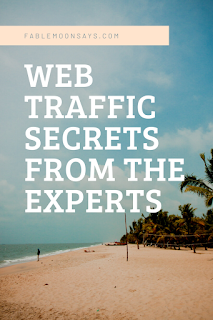 Web traffic secrets from experts