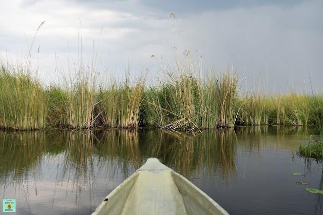 Paseo en Mokoro en la Reserva de Moremi de Botswana