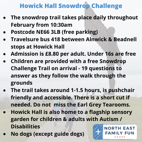 Howick Hall Snowdrop Walk & Sensory Garden in Northumberland i
