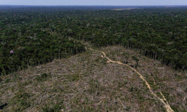 Desmatamento na Amazônia avança 20% entre agosto de 2018 e abril de 2019