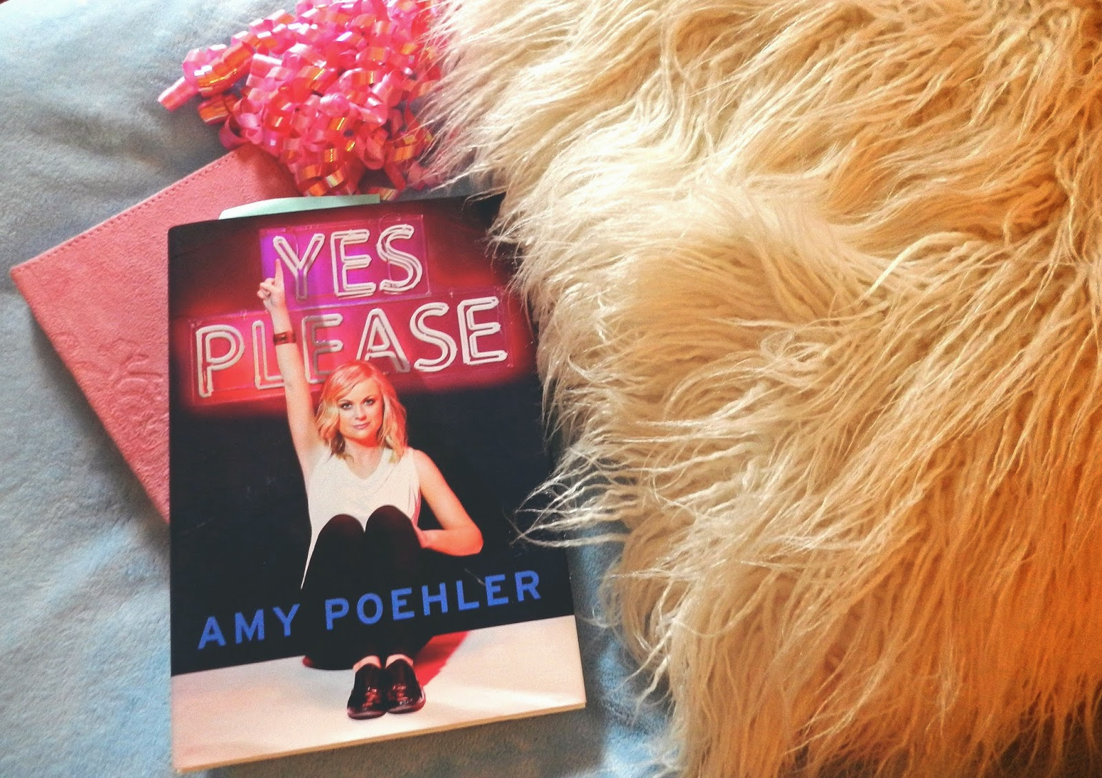 amy poehler yes please book review